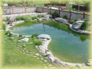 Искусственный пруд в Краснодаре