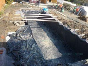 Пруд-бассейн с биоплато