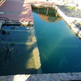 Пруд-бассейн с биоплато. биопруд с зоной регенерации