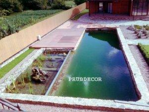 пруд-бассейн в краснодаре