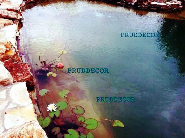 искусственный пруд в Краснодаре под ключ