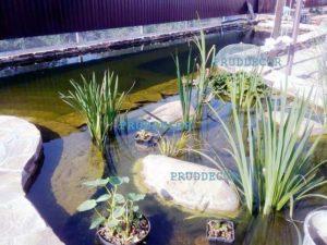 строительства пруда и водопада в Сочи. биопруд