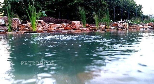 фото красивого пруда. Биопруд с ручьём в Краснодаре