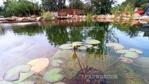 Искусственный пруд с ручьём в Краснодаре