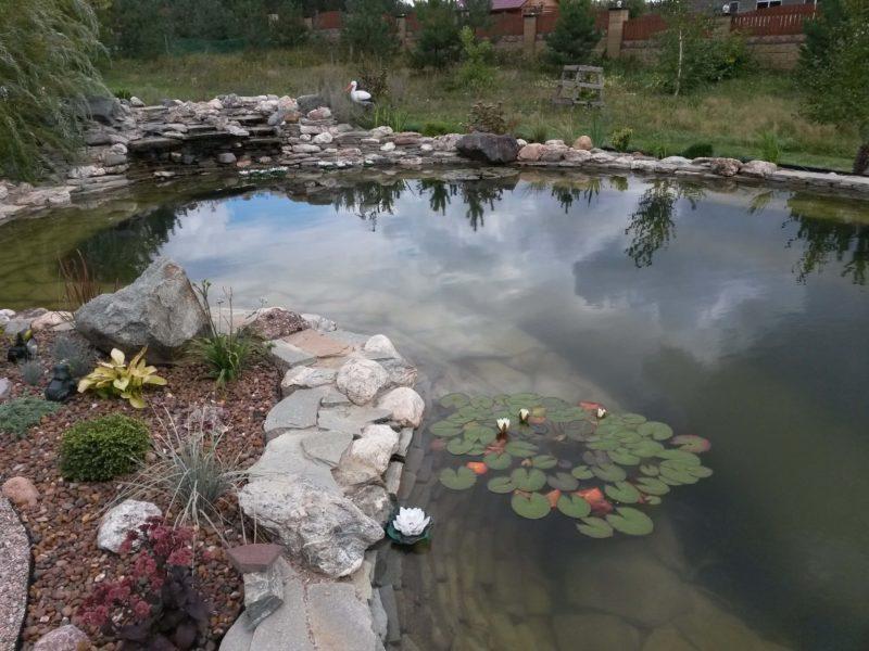 Искусственный пруд с мощением верхней ступени камнем. Строительство декоративных прудов любой формы, размера и назначения.