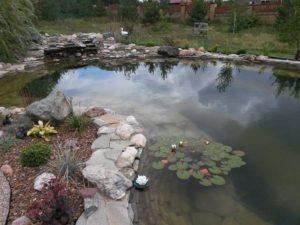 Искусственный водоём в саду. Строительство прудов в Краснодаре