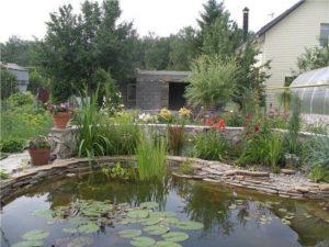 Водоем из глины на даче, искусственный пруд в Краснодаре
